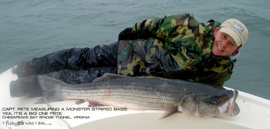 Captain Pete Daulberg of Four Seasons Guide Service - Chesapeake Bay Fishing Guides -Striped Bass Fishing Guides