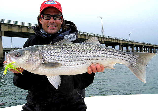 Virginia fishing report cbbt chesapeake bay bridge for Striper fishing chesapeake bay