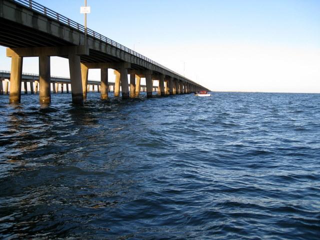 Virginia fishing report cbbt chesapeake bay bridge for Fishing report chesapeake bay