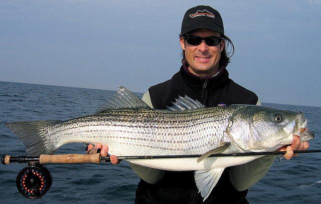 virginia fishing report cbbt chesapeake bay bridge